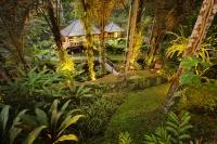 java house garden.jpg
